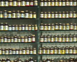 prenatal supplement